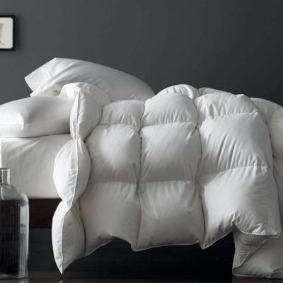 Comforters + Bedspreads